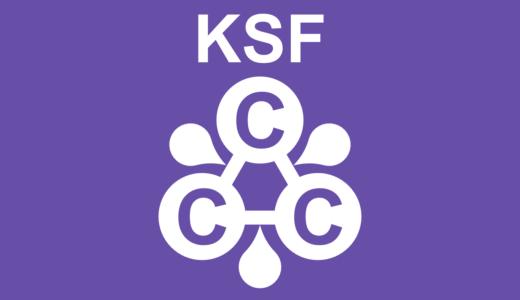 3C分析とKSFに基づく企業戦略:大前研一の戦略的三角関係